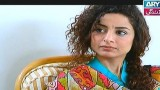 Koi Nahi Apna, Episode 9, 29th December 2014