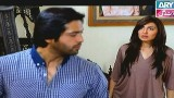 Koi Nahi Apna, Episode 17, 6th January 2015
