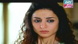 Koi Nahi Apna, Episode 19, 8th January 2015