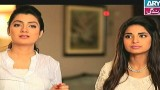 Na Kutro Punkh Mere, Episode 13, 17th January 2015