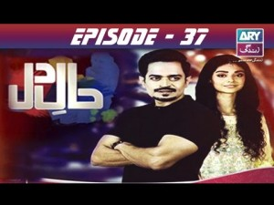 Haal-e-Dil – Episode 37 – 8th November 2016