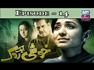 Khushi Aik Roag – Episode 14 – 15th November 2016