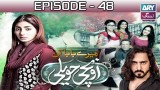 Mere Baba ki Ounchi Haveli – Episode 48 – 28th November 2016