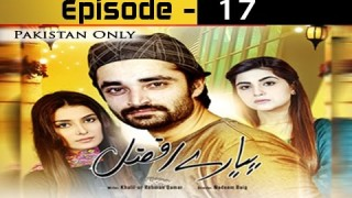 Pyarey Afzal Episode 17 – 10th December 2016
