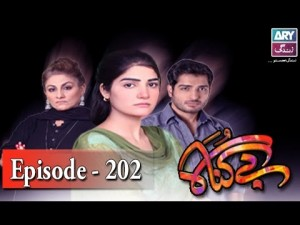 Begunah Episode 202 – 13th January 2017