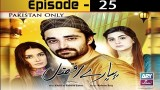 Pyarey Afzal Episode 25 – 7th January 2017