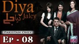 Diya Jalay – Episode 08 – 8th February 2017