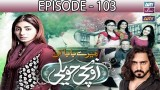 Mere Baba ki Ounchi Haveli – Episode 103 – 2nd March 2017