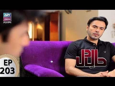 Haal-e-Dil – Episode 203 – 30th August 2017