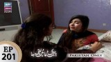 Babul Ki Duayen Leti Ja – Episode 201 – 14th November 2017