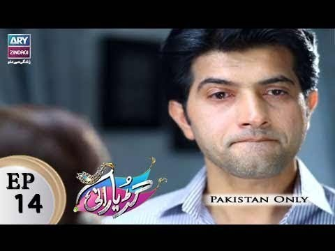 Guriya Rani – Episode 14 – 6th November 2017