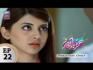 Guriya Rani – Episode 22 – 14th November 2017