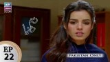 Rasm-e-Duniya – Episode 22 – 13th November 2017