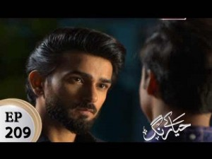 Haya Kay Rang – Episode 209 – 26th December 2017