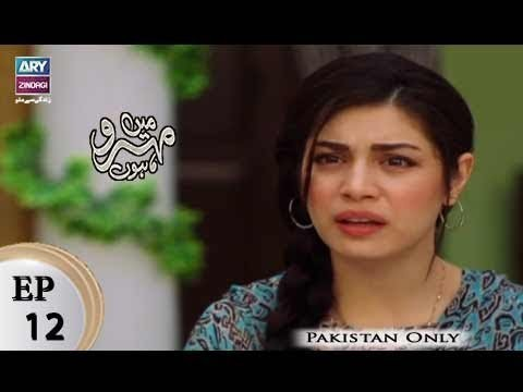 Mein Mehru Hoon – Episode 12 – 7th December 2017