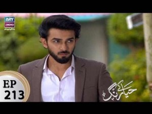 Haya Kay Rang – Episode 213 – 2nd January 2018