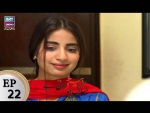 Mubarak Ho Beti Hoi Hai – Episode 22 – 2nd January 2017