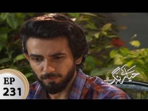 Haya Kay Rang – Episode 231 – 1st February 2018