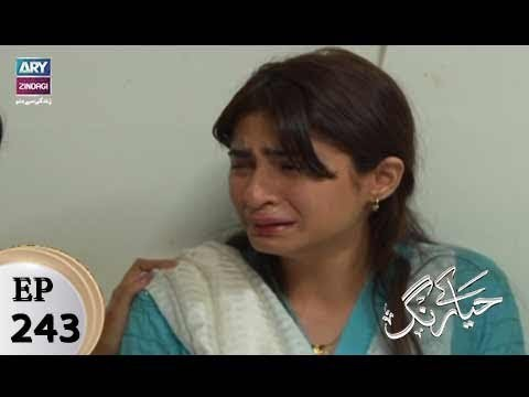 Haya Kay Rang – Episode 243 – 22nd February 2018