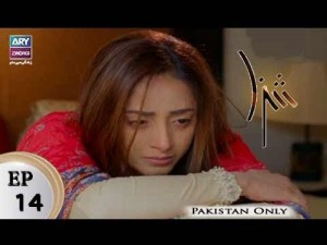 Shiza – Episode 14 – 17th February 2018