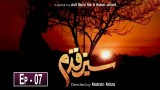 Sabz Qadam Episode 7 – 11th December 2019